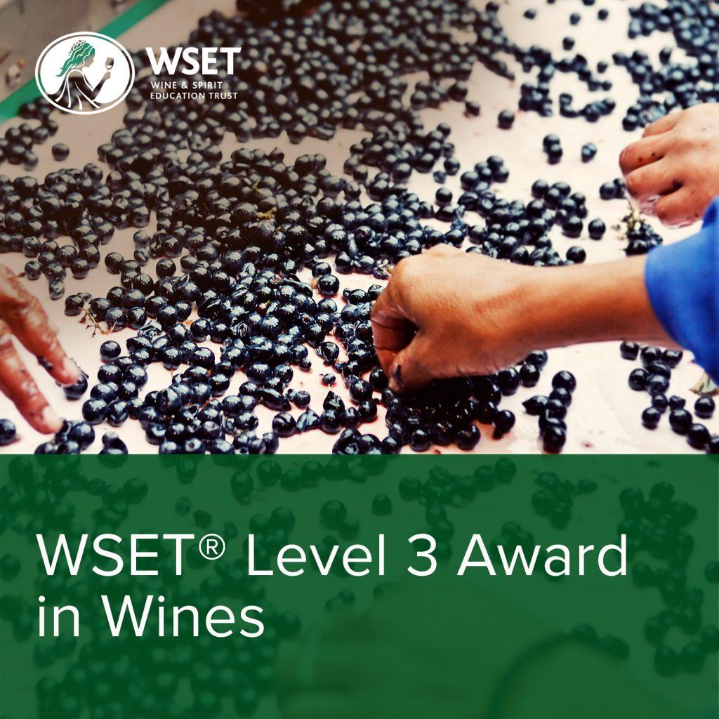 WSET_Wines_Level3_1600x1600