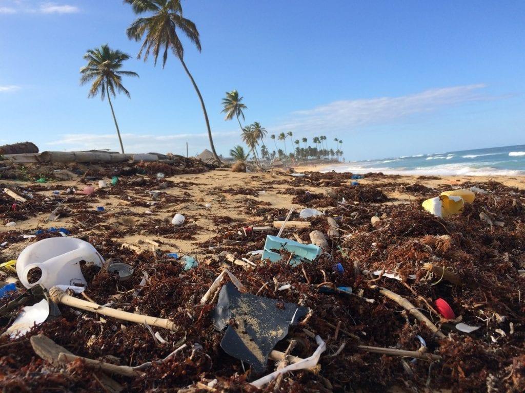 plastic bottles littering beach